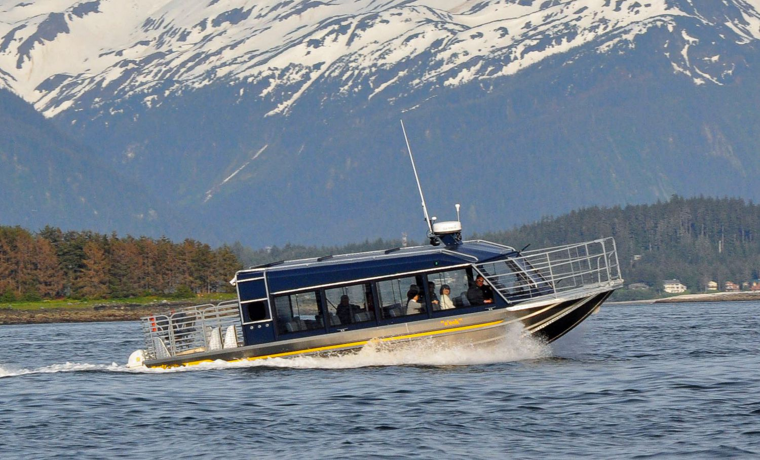 35′ Twin Diesel Whale Watching Tour Boat
