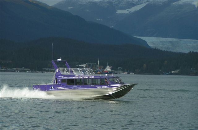 51′ Triple Diesel Whale Watching Tour Boa