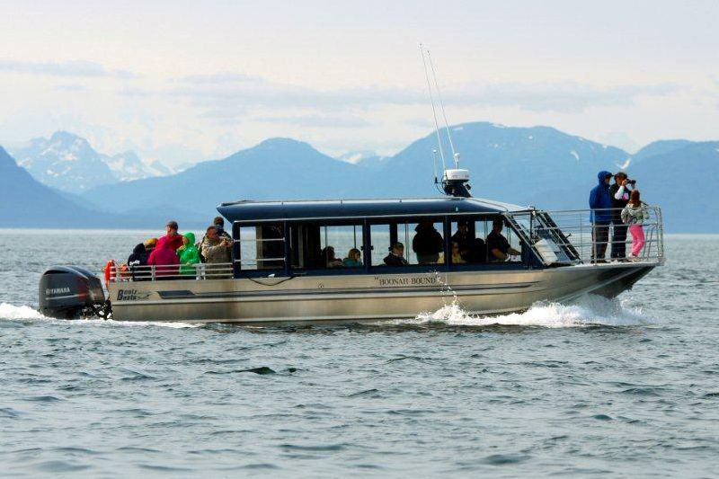 Bentz Boats Outboards and Sterndrives