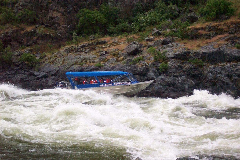 36′ Triple Diesel Tour Boat